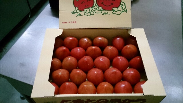 男前オーナー日記 お宝トマト